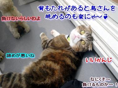 遊ぼう8.jpg