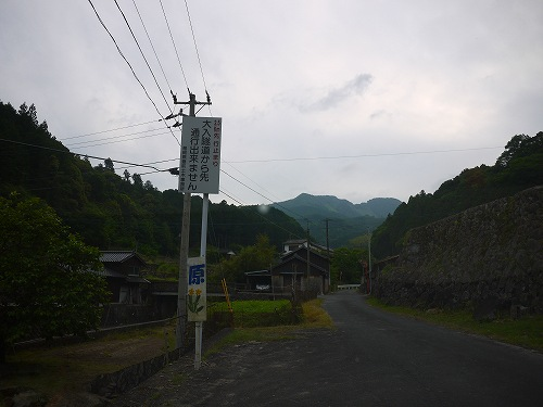 P1050085.jpg
