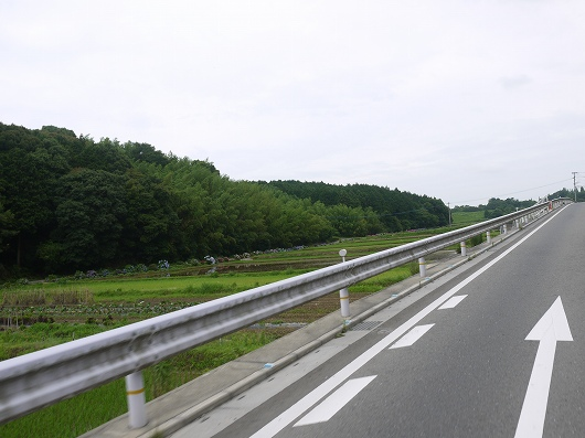 P1130309.jpg