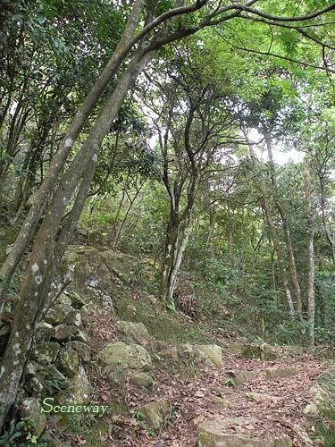 daibousan090822_1-14_500.jpg