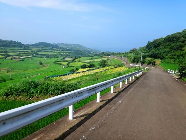 31 島らしい美しい風景.JPG