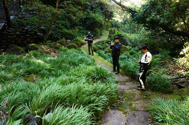 33 緑いっぱいの滝でした.JPG