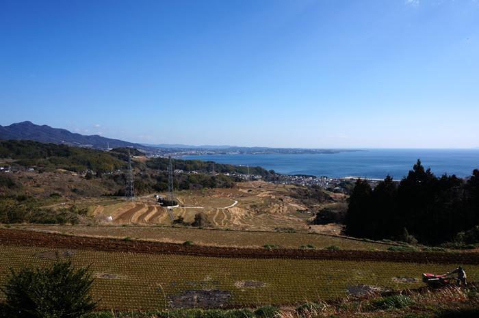 3 別府湾と国東が見える.JPG
