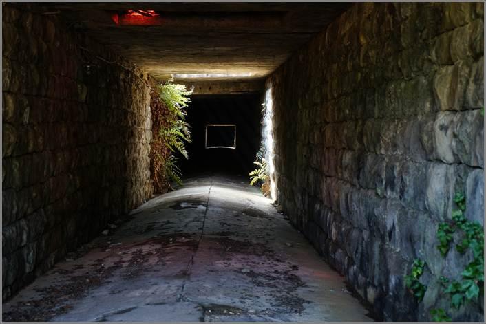 4 桜町トンネル.JPG