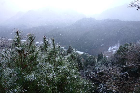 雪景色最高.JPG