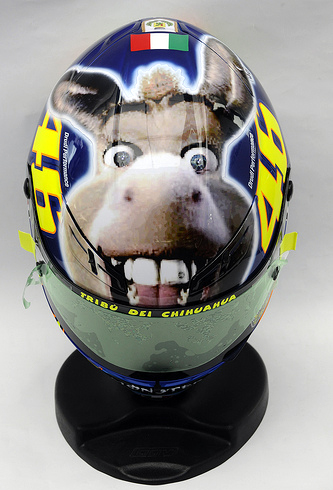 donkey_face_rossi.jpg