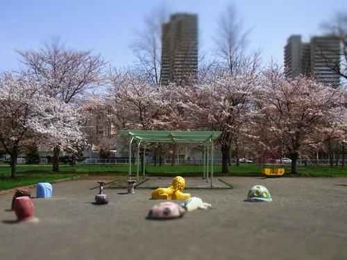 昼下がりの公園.jpg