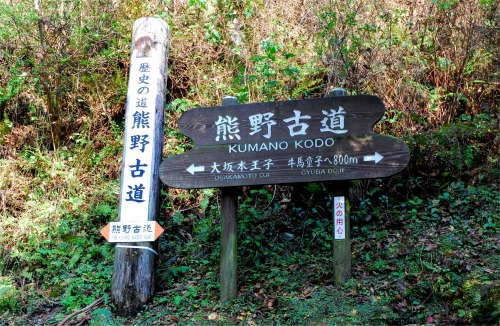 s-08.11.28 熊野古道なかへぢ1.jpg