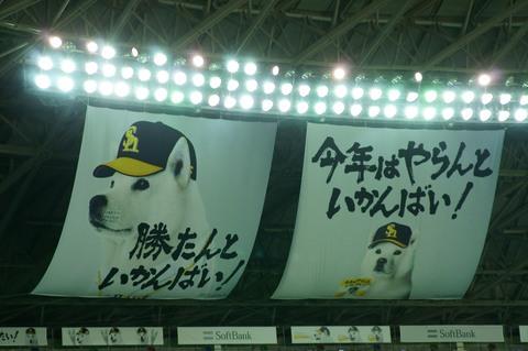 おとうさん犬.jpg