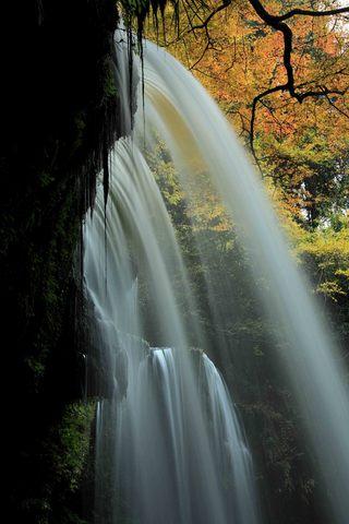 滝裏から見上げると.jpg