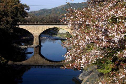石橋.JPG