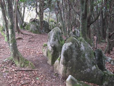 塀山のカルスト地形