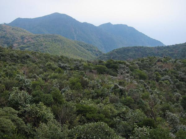 稲尾岳 from 自然石展望台