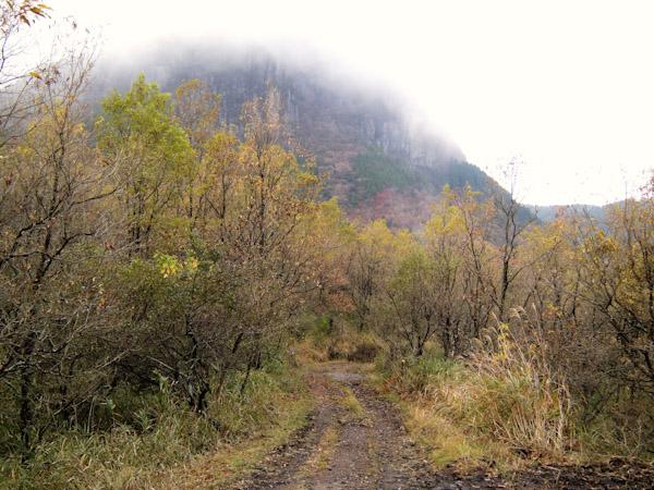霧の万年山