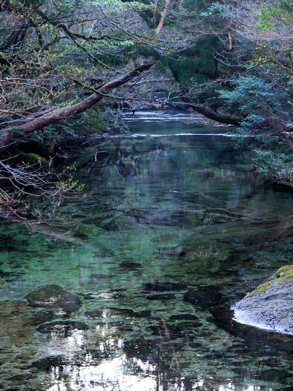 夜明けの淀川