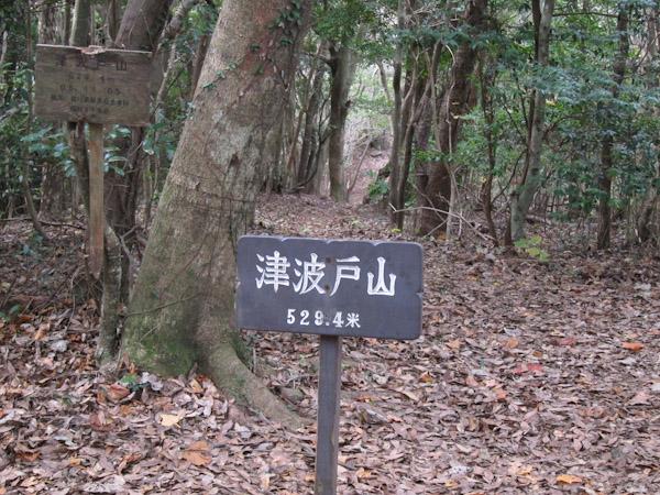 津波戸山の山頂