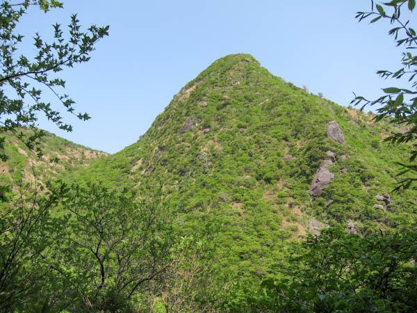 国見岳を見上げる