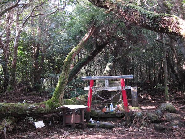 稲尾岳の山頂