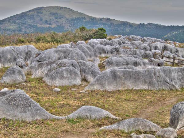 羊の群れと貫山