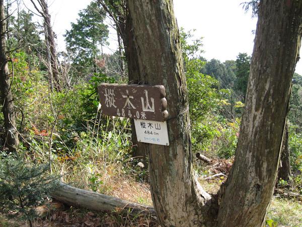 樅の木山の山頂