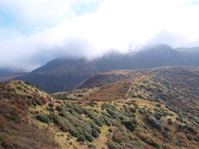 霧に覆われた星生山