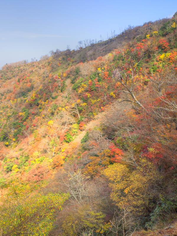 南岳からみる紅葉