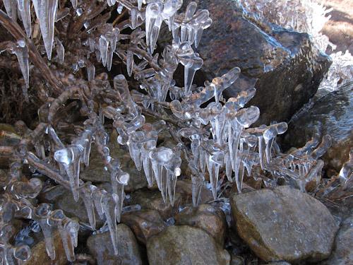 御池の雨氷