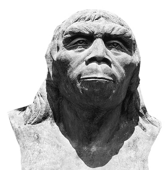 Peking man.jpg