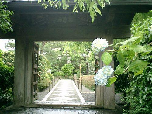 "10) Kamakura ""Meigettsuin-temple "".JPG"