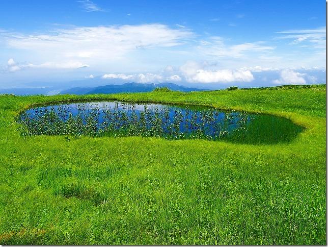 月山八合目  弥陀ヶ原(みだがはら)湿原 池塘(ちとう)