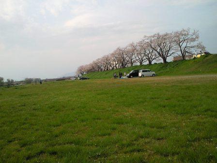 桜川1.JPG