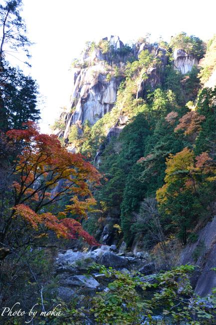 20101121_shosenkyo14.jpg