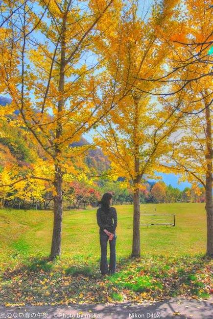 秋にかこまれて!?