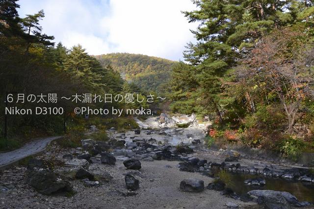 20101023_kusatu-asama12.jpg