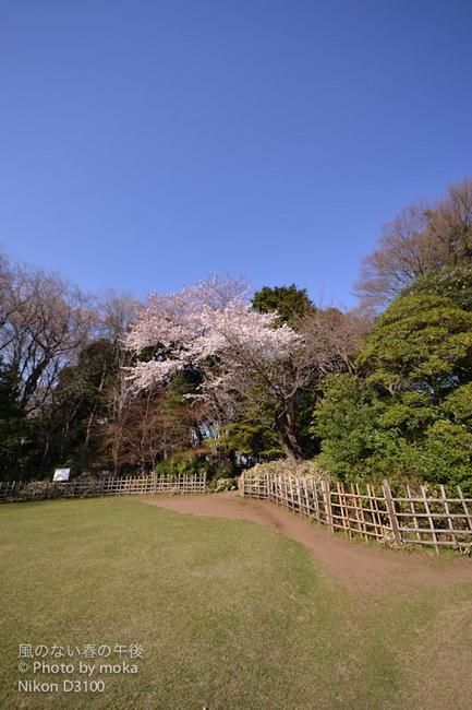 飛鳥山公園内、旧渋沢庭園