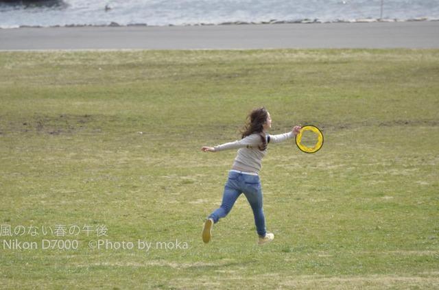 20120326_kasairinkai-park45.jpg