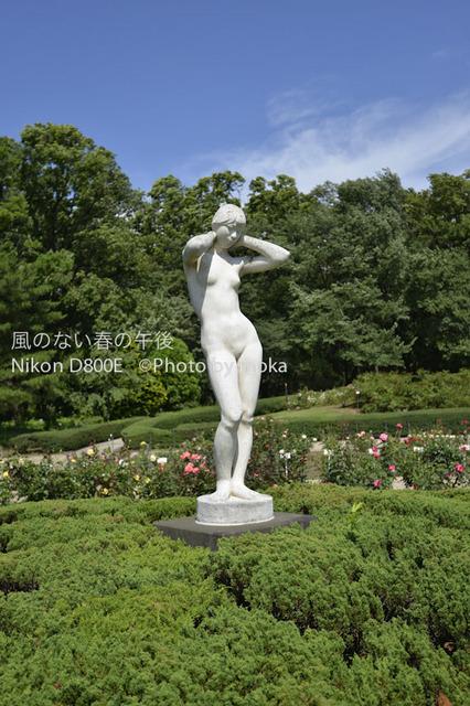 20120711_jindaiji22.jpg