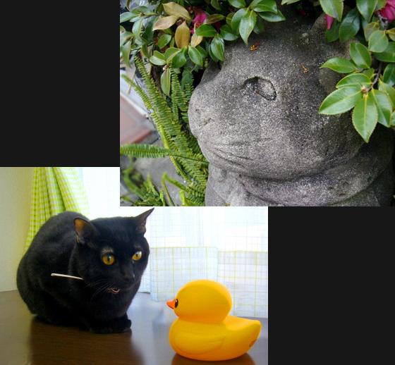 猫の恩返し.jpg