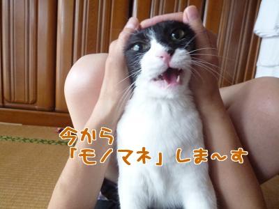 P1030167編集②.jpg
