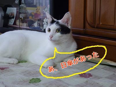 P1050017編集②.jpg