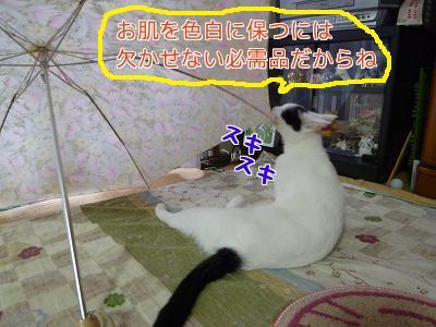 P1050037編集②.jpg