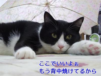 P1050057編集②.jpg