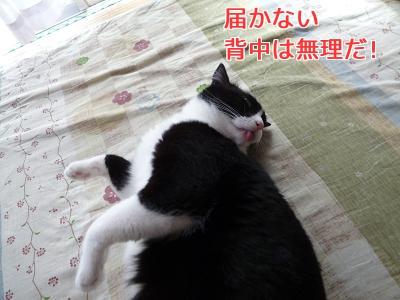 P1050641編集②.jpg