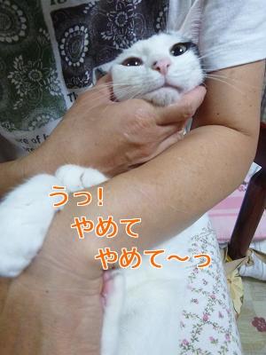 P1060502編集②.jpg