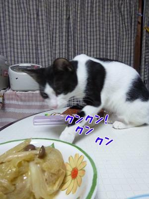 P1070004編集②.jpg