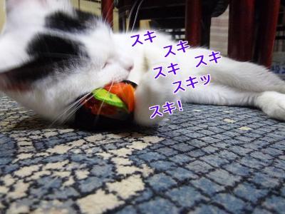 P1070103編集②.jpg