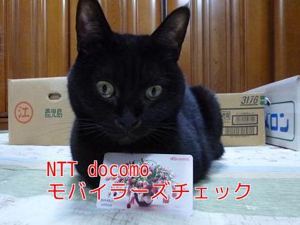 P1070692編集②.jpg