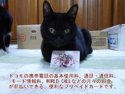 P1070693編集③.jpg