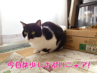 P1070870編集②.jpg
