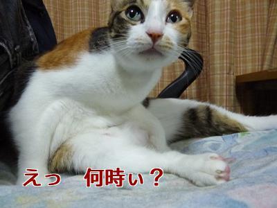 P1070965編集②.jpg